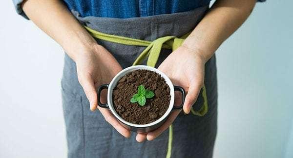 Cultivate Web Design | Harvest Your Online Potential | Cultivate Nourish Nurture